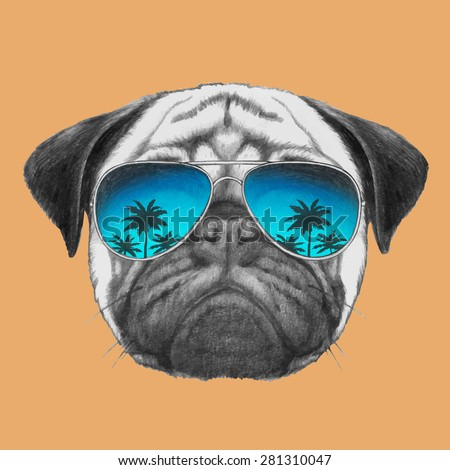 Hand drawn portrait of Pug Dog with mirror sunglasses. Vector isolated elements - stock vector