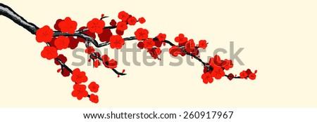 Hand drawn sakura on a light background - stock vector