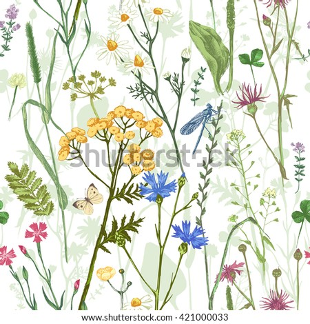 Hand drawn seamless pattern with colorful herbs and flowers - stock vector