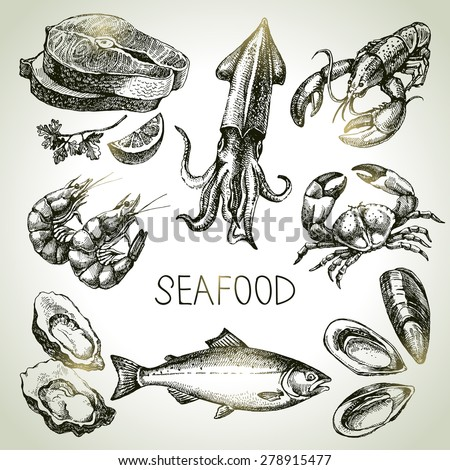 Hand drawn sketch set of seafood. Vector illustration - stock vector