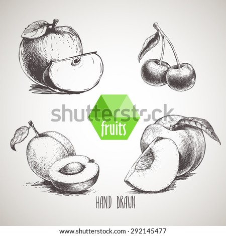 Hand drawn sketch style fruits set. Apple wIth quarter, apricot with half of apricot, double cherries and peach with quarter of peach. Organic food, farm fresh fruit. Vintage style illustration - stock vector