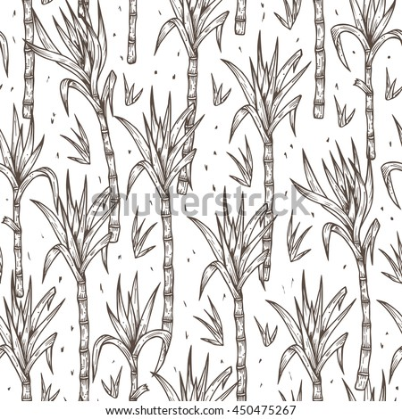 Hand Drawn Sugarcane Plants Vector Seamless Pattern. Sugar cane stalks with leaves endless background. - stock vector