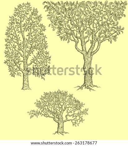 Hand drawn trees.8 EPS - stock vector