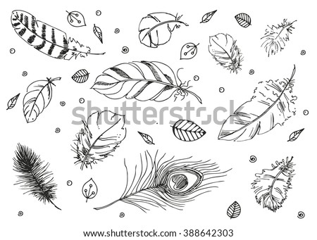 Hand drawn vector doodle Feathers. sketch for adult antistress coloring page, tattoo, poster, print, t-shirt, invitation, cards, banners, flyers, calendars - stock vector