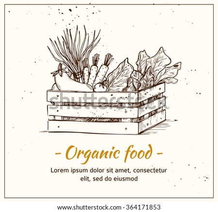 Hand drawn vector illustration - Fresh vegetables. Supermarket. Grocery store. Organic and vegan food. - stock vector
