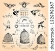 Hand Drawn Vintage Birds, Bees and Banners Vector Set - stock vector