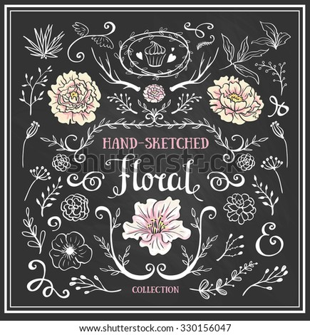 Hand Drawn vintage floral elements. Set of flowers and decorative elements on the chalkboard. - stock vector