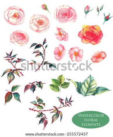 Hand drawn watercolor floral elements - leaves and flowers in vector. Isolated on the white background, easy editable and great for floral compositions.Design for invitation, wedding or greeting cards - stock vector