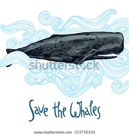 Hand Drawn Whale Illustration In Blue Waves. Save The Whales - stock vector