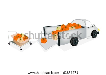 Hand Truck or Dolly Loading Fresh Raw Pumpkins into A Pickup, Ready for Shipping or Delivery.  - stock vector