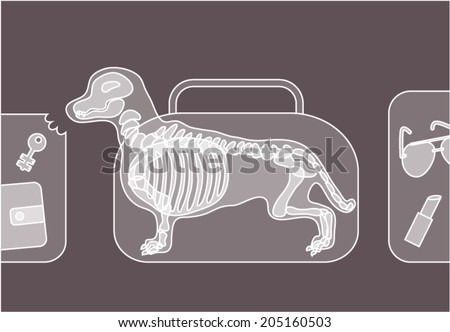 Handbag with a dog chewing luggage under xray on security control.  - stock vector