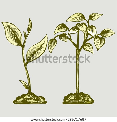Handful of the ground and plant. Vector Image   - stock vector