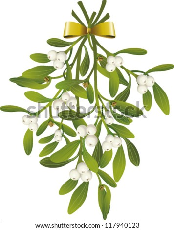 Hanging Mistletoe with golden bow - stock vector