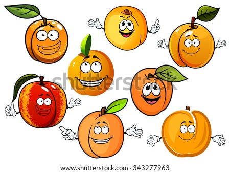 Happy red and orange peaches, nectarines and sweet aroma yellow apricots fruits with green leaves in cartoon style, for agriculture and food design - stock vector