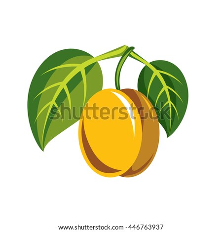Harvesting symbol, single vector fruit isolated. Ripe organic sour lemon with green leaves, healthy food idea design icon. - stock vector