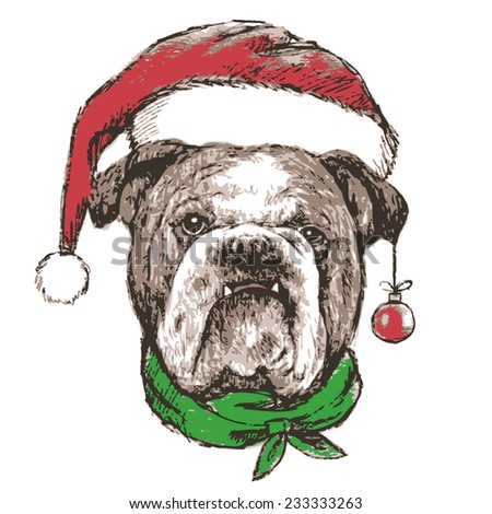 Head of bulldog with santa claus hat , use for christmas background - stock vector