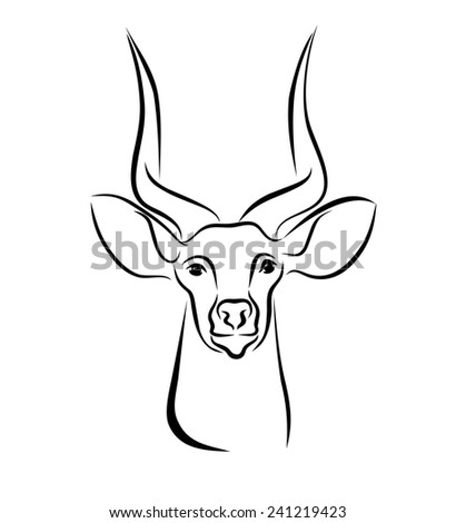 Antelope Face Drawing With Head of Antelope With