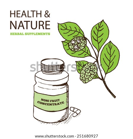 Health and Nature Supplements Collection. Noni Fruit Concentrate  - Morinda Citrifolia  - stock vector