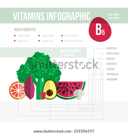 Healthy lifestyle infographic - vitamine B5 in fruits and vegetables. Vegeterian and diet vector concept.  - stock vector