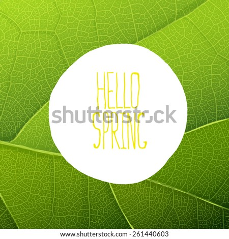 Hello Spring Text on Green Leaf Texture - stock vector