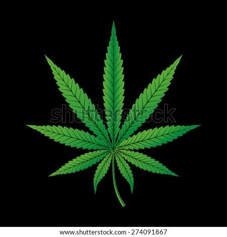 Hemp Cannabis Leaf on Black Background - stock vector