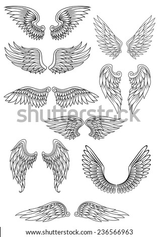 Heraldic bird or angel wings set isolated on white for religious, tattoo or heraldry design - stock vector