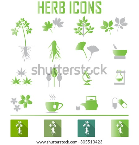 herb icons. vector illustration eps 10 - stock vector