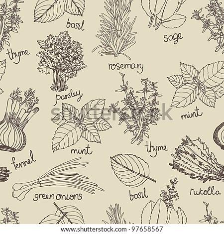 Herbs background - stock vector