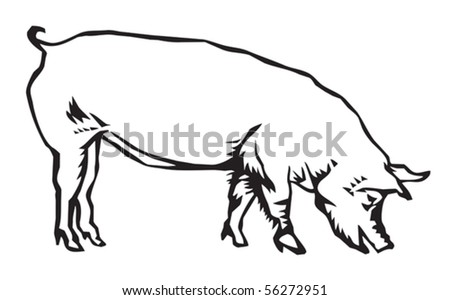 hog - stock vector