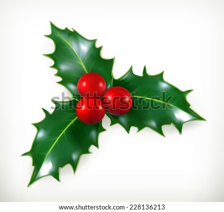 Symbolic Christmas Holly Berry Stock Photos Images