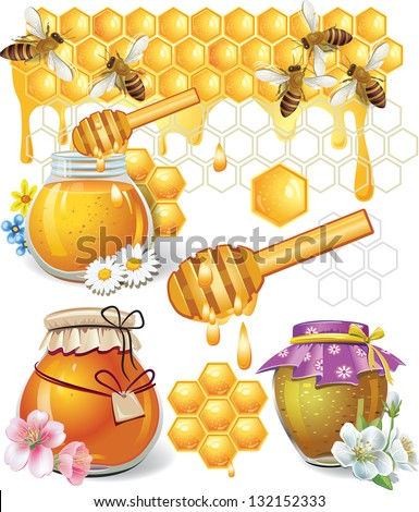 Honey - stock vector