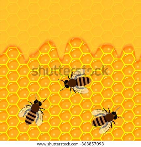 honeycomb and sweet honey drips. - stock vector