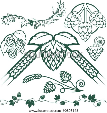 Hops Collection - stock vector