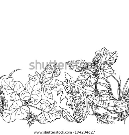 Horizontal seamless pattern various common herbs and weeds - stock vector