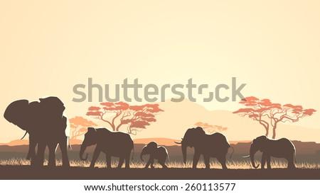 Horizontal vector illustration wild herd of elephants in African sunset savanna with trees. - stock vector