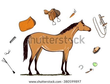 Horse and horseback riding tack. Bridle, saddle, stirrup, brush, bit, harness, supplies, whip equine harness equipments. Equestrian sport  isolated on white. Hand drawing vector illustration. - stock vector