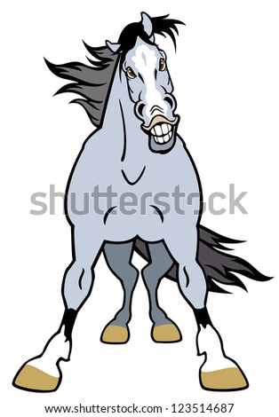 Horse from the front Stock Photos, Images, & Pictures ...