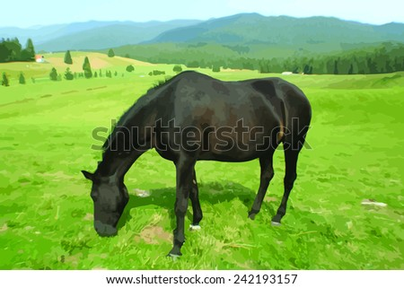 horse grazing on a meadow - vector realistic image - stock vector