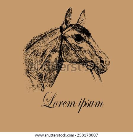 Horse Head Logo vector design template. Horse mascot, team logo icon. Creative logo for Horse Racing, Trail riding, Para-Equestrian sport & Equestrian business.  - stock vector
