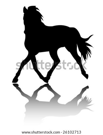 horse silhouette - stock vector