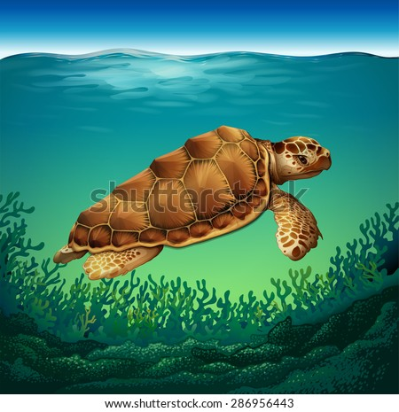 Huge brown turtle swimming in the sea - stock vector