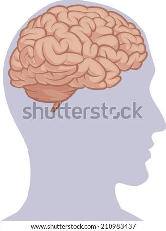 Human Body Part - Brain Inside Head Silhouette - stock vector