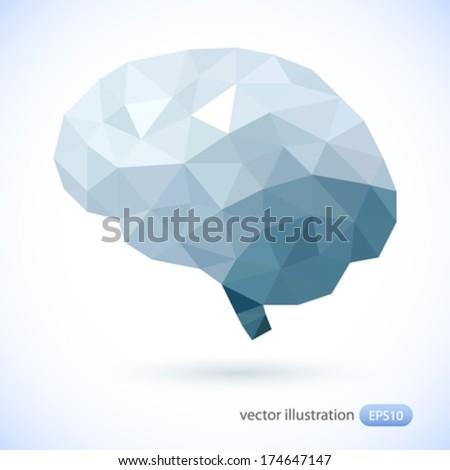 Human brain. Vector illustration. - stock vector