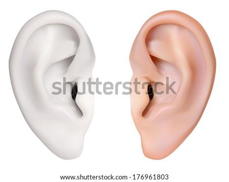 Human Ear. Vector illustration - stock vector