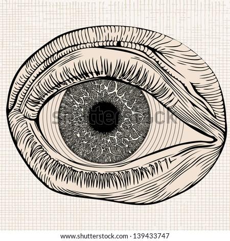 Human Eye emblem. - stock vector