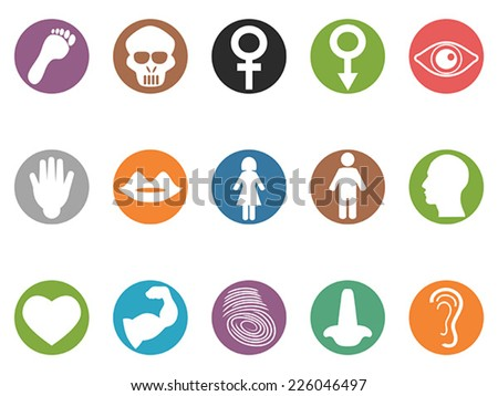 human feature round buttons icons set - stock vector