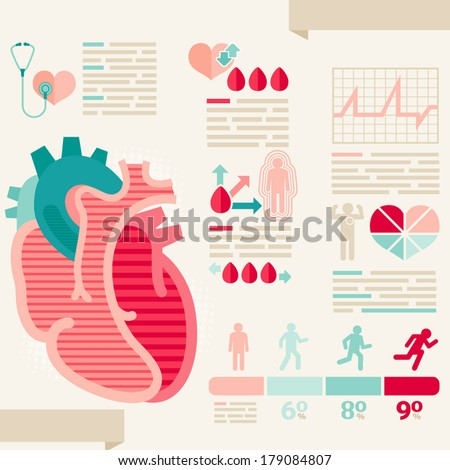 Human heart/info-graphic of Healthcare - stock vector