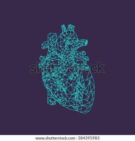 human heart. polygonal graphics. vector illustration - stock vector