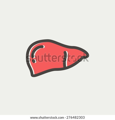 Human liver icon thin line for web and mobile, modern minimalistic flat design. Vector icon with dark grey outline and offset colour on light grey background. - stock vector