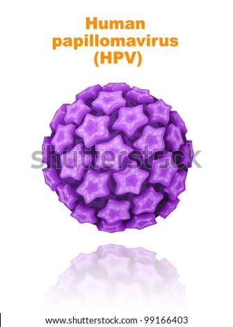 Human papillomavirus (HPV). Vector illustration. - stock vector